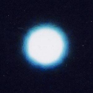 star-sakura2.0303